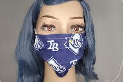 Selling with online payment: Tampa Bay Rays Face Mask
