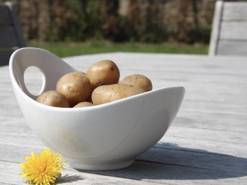 Vente avec paiement en direct: Sac de pommes de terre spécial GRATIN 20 Kg