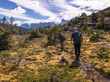 Demande de devis: Hunting for Fossils in Torres del Paine, Chile