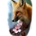 Tattoo design: Side Profile Fox