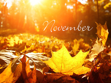 Selling: NOVEMBER Monthly Reading: Psychic Predictions & Tarot!