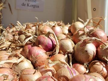 Vente avec paiement en direct: Vente de légumes variés