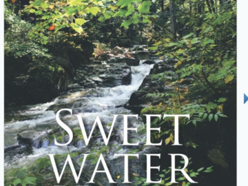 Selling with online payment: Sweet Water Hunt