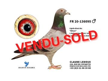 Vente avec paiement en ligne: FR.20-136095 DOUBLE WILSON 1°NAT AGEN 2°INT