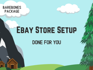 Offering online services: First Time Ebay Store Setup - Barebones Package