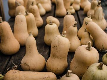 Vente avec paiement en direct: légumes d'hiver