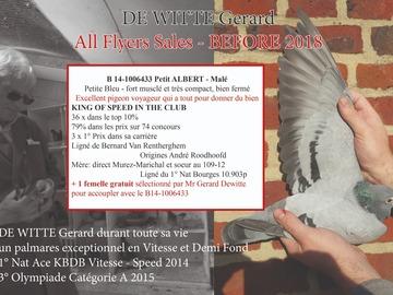 Vente avec paiement en ligne: Couple B14-Petit Albert + Femelle 2020 Gratuite !!