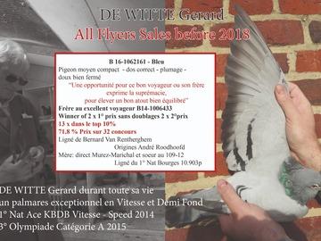 Vente avec paiement en ligne: B 16-1062161 - Bleu Pigeon Gabarit moyen compact
