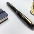Renting out: Edison Collier Burnished Gold (F nib)