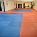 Vermiete Gym pro H: Trainingshalle / Kampfsport-Raum