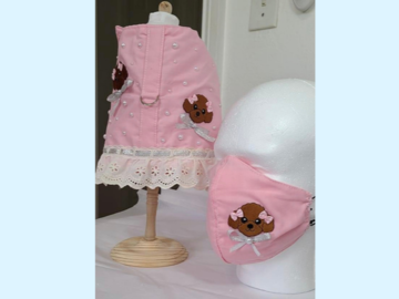 Selling: Harness/Vest with matching Mom/Dad Mask Chocolate Poodle