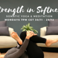 Group Session Offering: Meditation & Gentle Somatic Yoga