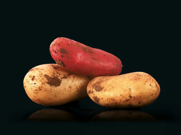 Vente avec paiement en direct: Pommes de terre