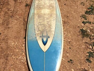 For Rent: 6.4 Walden twinfin, amazing cruiser