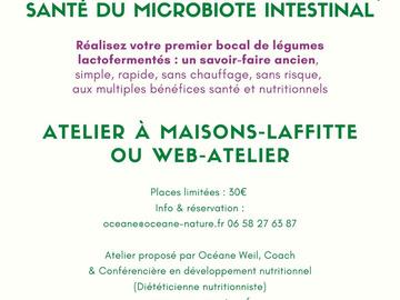 Selling: e-atelier Lactofermentation