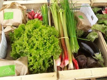Vente avec paiement en direct: légumes bio