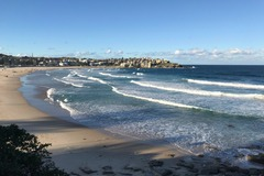 Offering with online payment: Surf lesson - Bondi Beach