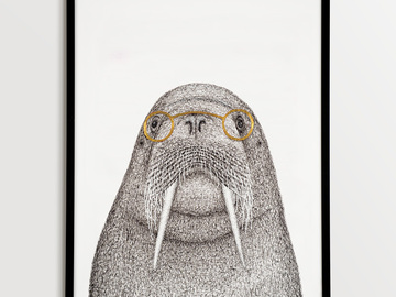 For Sale: Framed Walrus Illustration