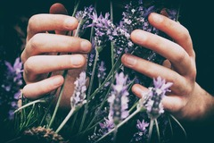 4 Credits: Aromatherapy for a Balanced Life