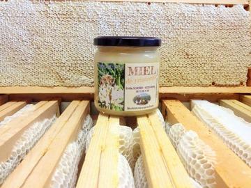 Les miels : Miel crémeux  de printemps