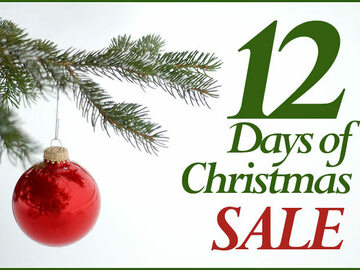 Selling: 12 Days of Christmas Psychic Readings: 12 QUESTIONS ANSWERED!