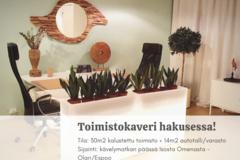 Renting out: Viihtyisä toimisto 10m kävelymatkan päässä Isosta Omenasta