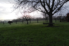 NOS JARDINS A LOUER: Jardin de 2 000 m² avec vue sur la campagne