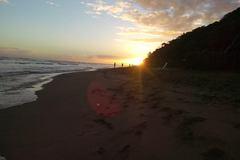 Excursion or Lesson: Full Day Surfari