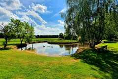NOS JARDINS A LOUER: Jardin de 5000m2 avec étang et dépendance