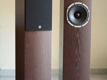 Vente: Vends Fyne Audio f 501, deux colonnes, comme neuves