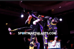 With Calendar Booking: Point Fighting, Boxing, Tae Kwon Do