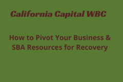 Announcement: How To Pivot Your Business & SBA Resources for  Recovery