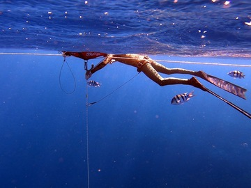 Freediving courses: Private AIDA 2 Course in Dahab, Egypt
