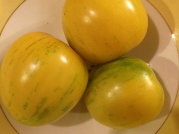 pay online or by mail: Huan U (Topaz) Tomato