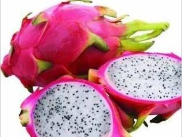 Buy Now: Dragon Fruit (Seeds)  White Flesh