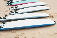 Vermiete dein Board pro Tag: Softy Surfboard Rentals
