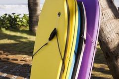 Vermiete dein Board pro Tag: Bodyboard rentals