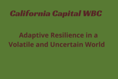 Announcement: Adaptive Resilience in a Volatile & Uncertain World
