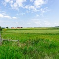 Land Available for Lease: 120 acres available for beekeeping in Douglas, CO