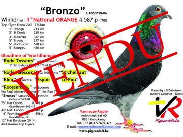 Vente avec paiement en ligne: VENDU descendant du Bronzo x Vital Limoges