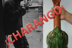 Offering with online payment: Charango lessons all levels