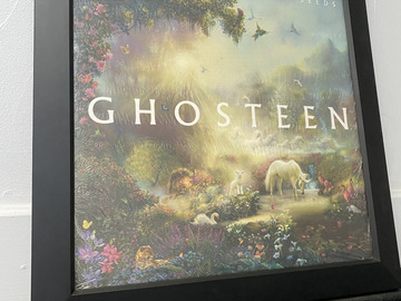 Vente: Cadre + vinyle Ghosteen de Nick Cave (Neuf)