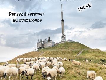 Vente avec paiement en direct: Vente directe agneaux fermiers en caissettes