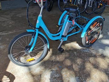Daily Rate: Power Assist Adult Tricycle