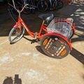 Daily Rate: Adult Trike