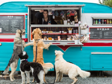 Employee Engagement & Team Building: Mutt-estroni Soup with The Seattle Barkery