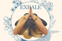 Group Session Offering: Hatha Yoga