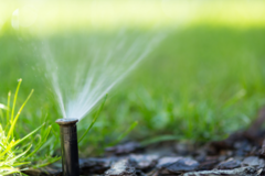For Sale: Domestic Water Right for Sale in Cheney-Spokane Area
