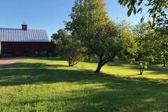 Land Available for Lease: 22 acres in South Hero, VT