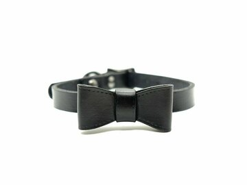Selling: True Midnight Small Dog Collar & Bow